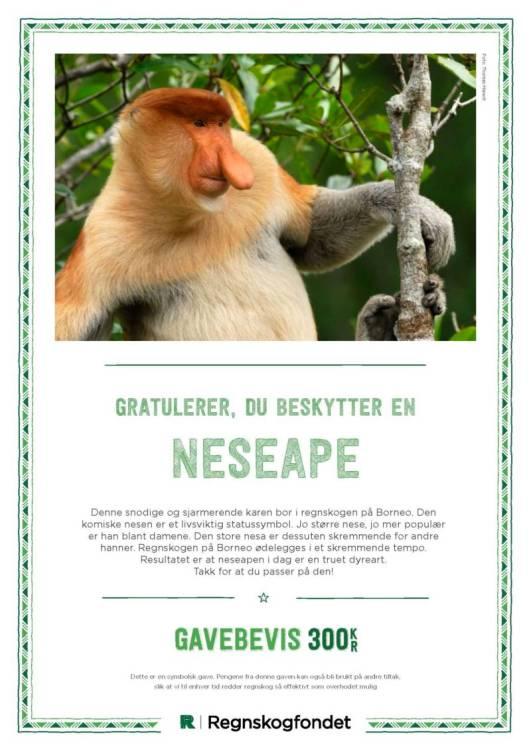 gavebevis_neseape_nettbutikk